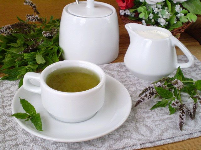 Готовим Коктейли Чай с мятой для похудения