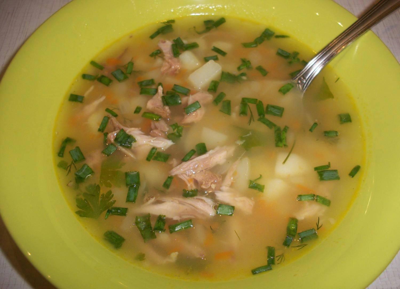 рецепты супов на свиной косточке