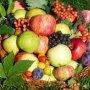 """10 самых богатых витамином """"С"""" весенне-летних фруктов и овощей"""