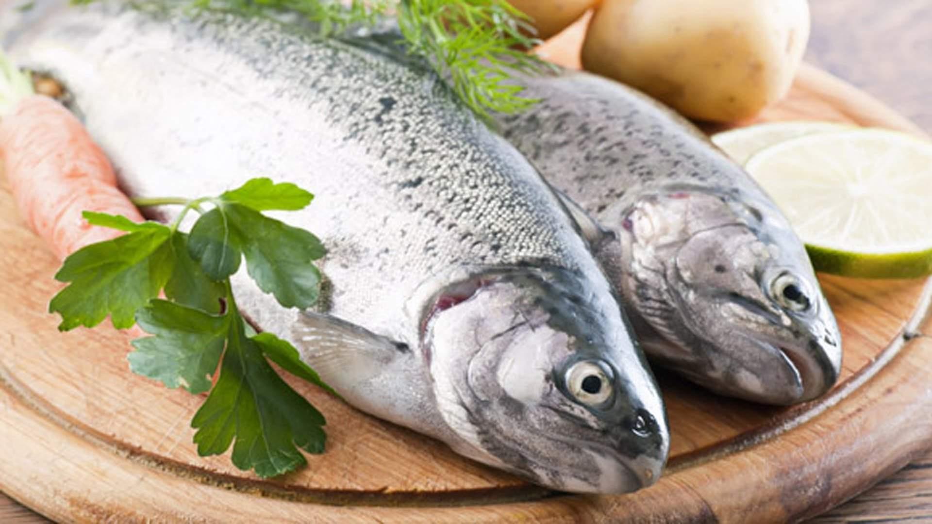 5 советов о том как правильно хранить свежую рыбу